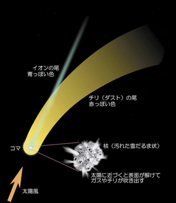 http://www.ncsm.city.nagoya.jp/study/astro/comet.jpg
