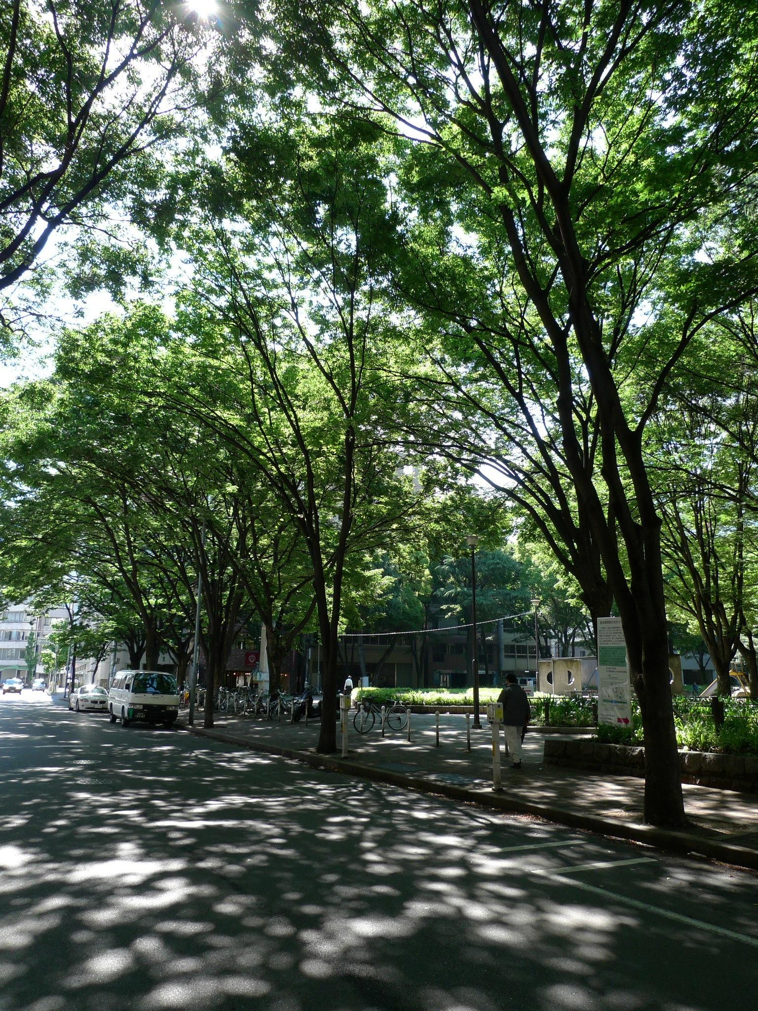 http://www.ncsm.city.nagoya.jp/study/astro/n072_P1040448.JPG